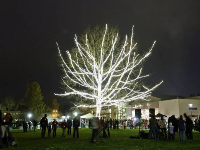 Redmond Lights 2018: Everything You Need To Know