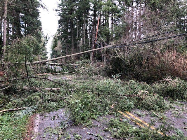 Windstorm Leaves 150,000+ Without Power, Widespread Damage