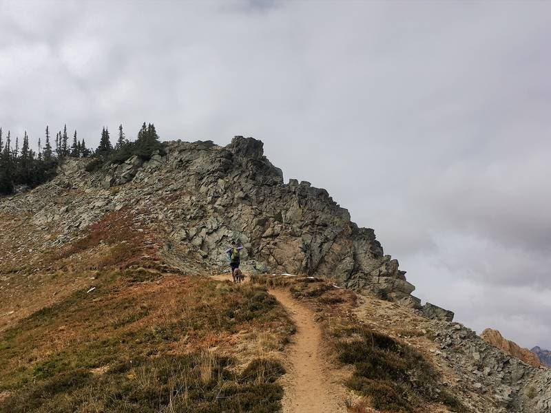 Washington Hiking Mishaps Used For New Survival Guide
