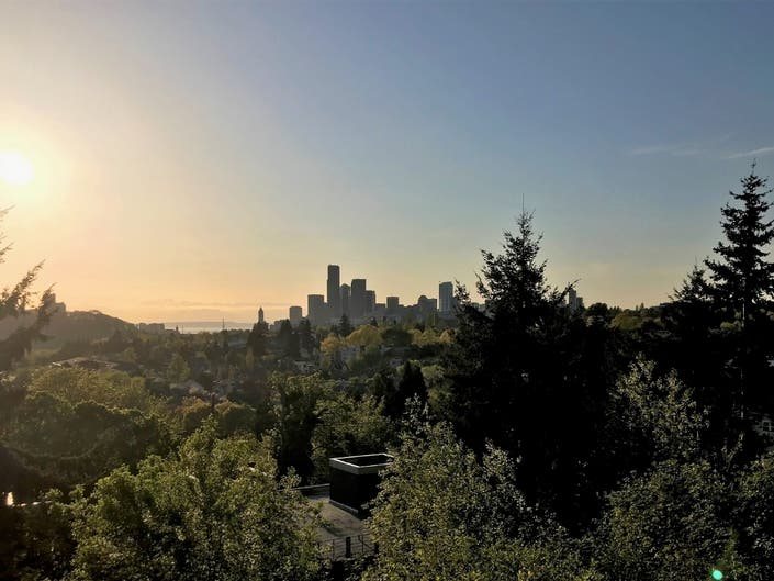Seattles Annual Free Tree Giveaway Now Underway
