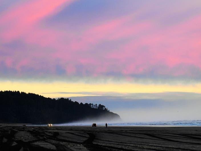 Washington Photos Of The Week: Fishing Heron, Chrome Bulldog