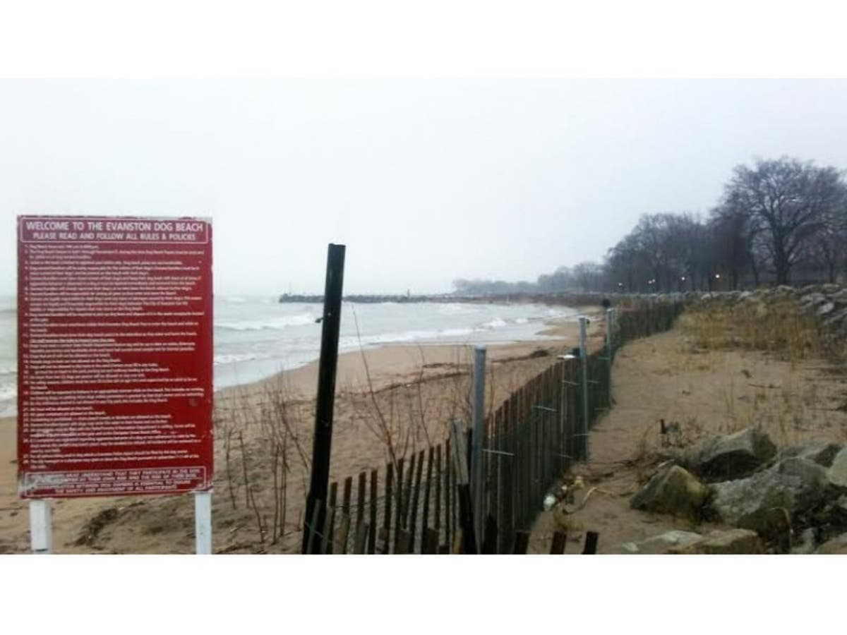 Evanston Dog Beach To Stay Closed For Summer Due To Erosion