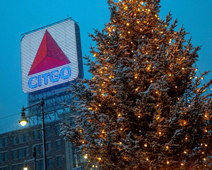 Holiday Firs Come to The Fenway | Boston, MA Patch