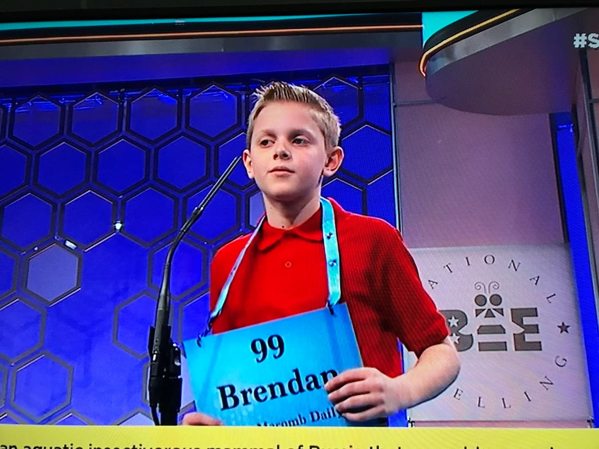 Novi Student Competes In National Spelling Bee | Novi, MI Patch