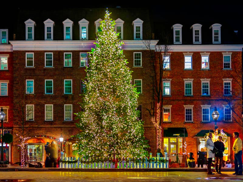 Tree Lighting To Kick Off Christmas In Alexandria | Old Town ...