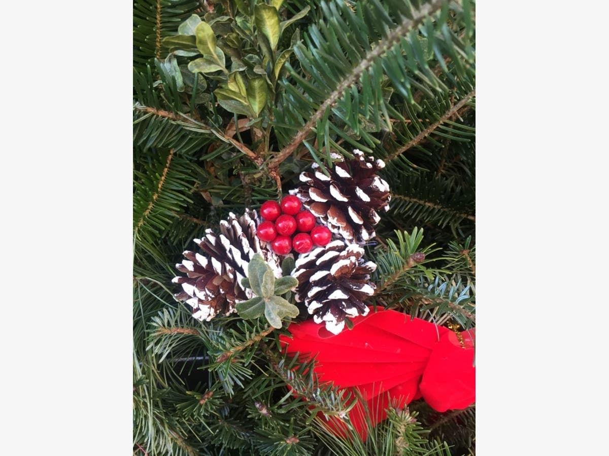 When And Where To Buy Christmas Trees Around McLean