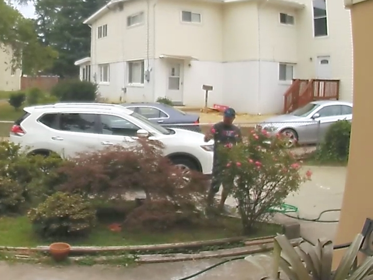 Rose Theft Caught On Camera Outrages Homeowner | Patch PM