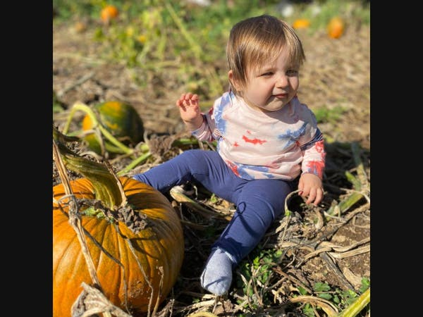 Pumpkin picking is a fun way to enjoy fall near NYC.