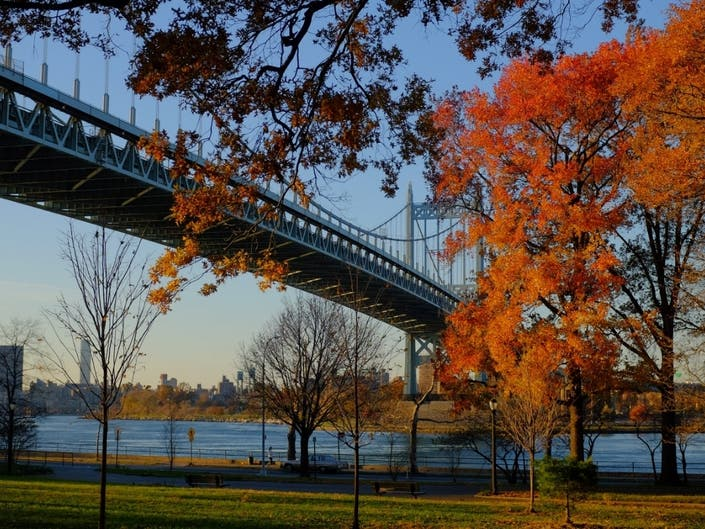 Leaf Peep In NYC: The Carless New Yorkers Guide To Fall Foliage