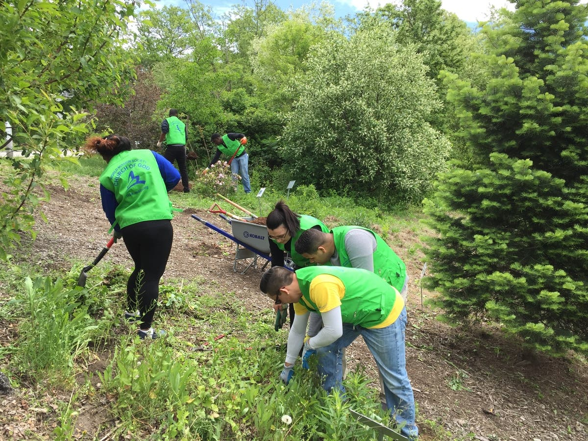 More than 20 Volunteers Clean Up Dodge Park in Worcester | Worcester