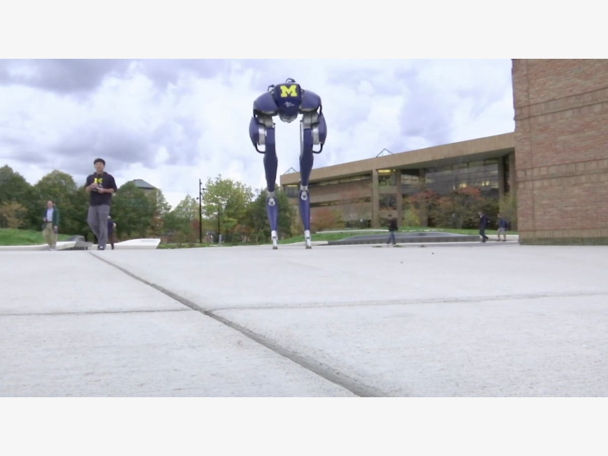 U  Of Michigan Expert Puts Bird-Like Robot Through Its Paces