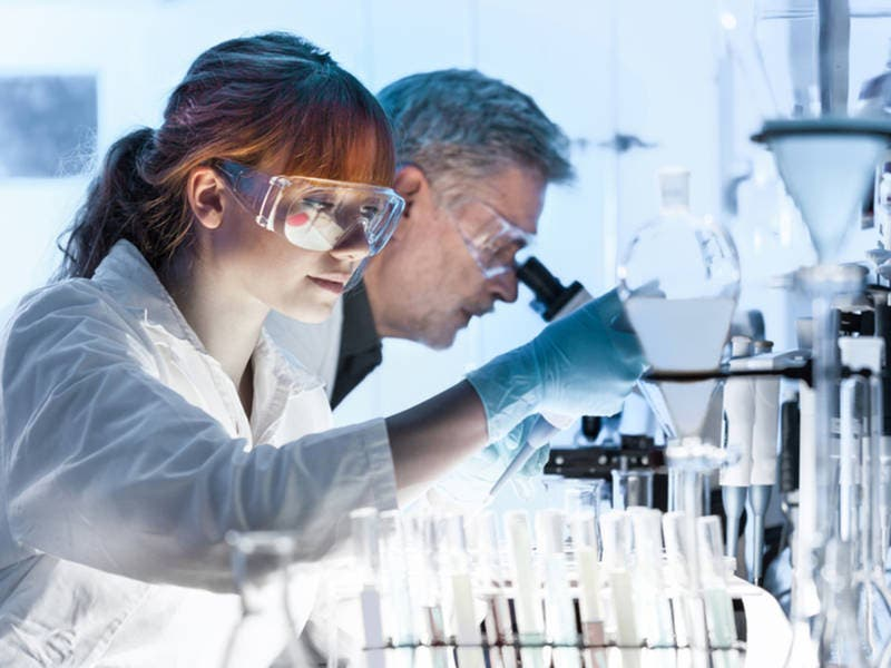 Jobs For Science Geeks Near Santa Monica