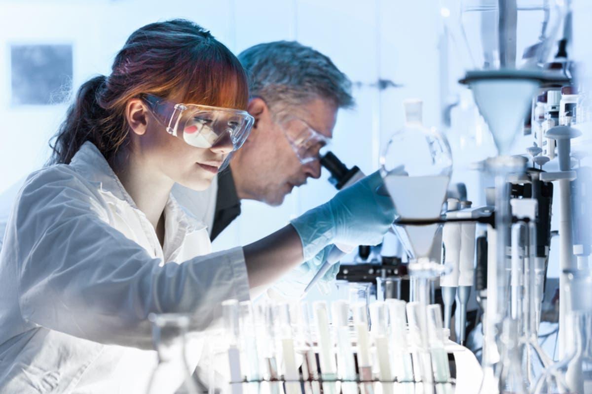 Jobs For Science Geeks Near Redondo Beach | Redondo Beach
