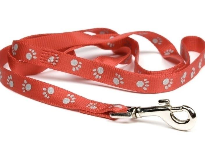 Slur-Ladden Speech   Dog-Walking Horror: LA Today