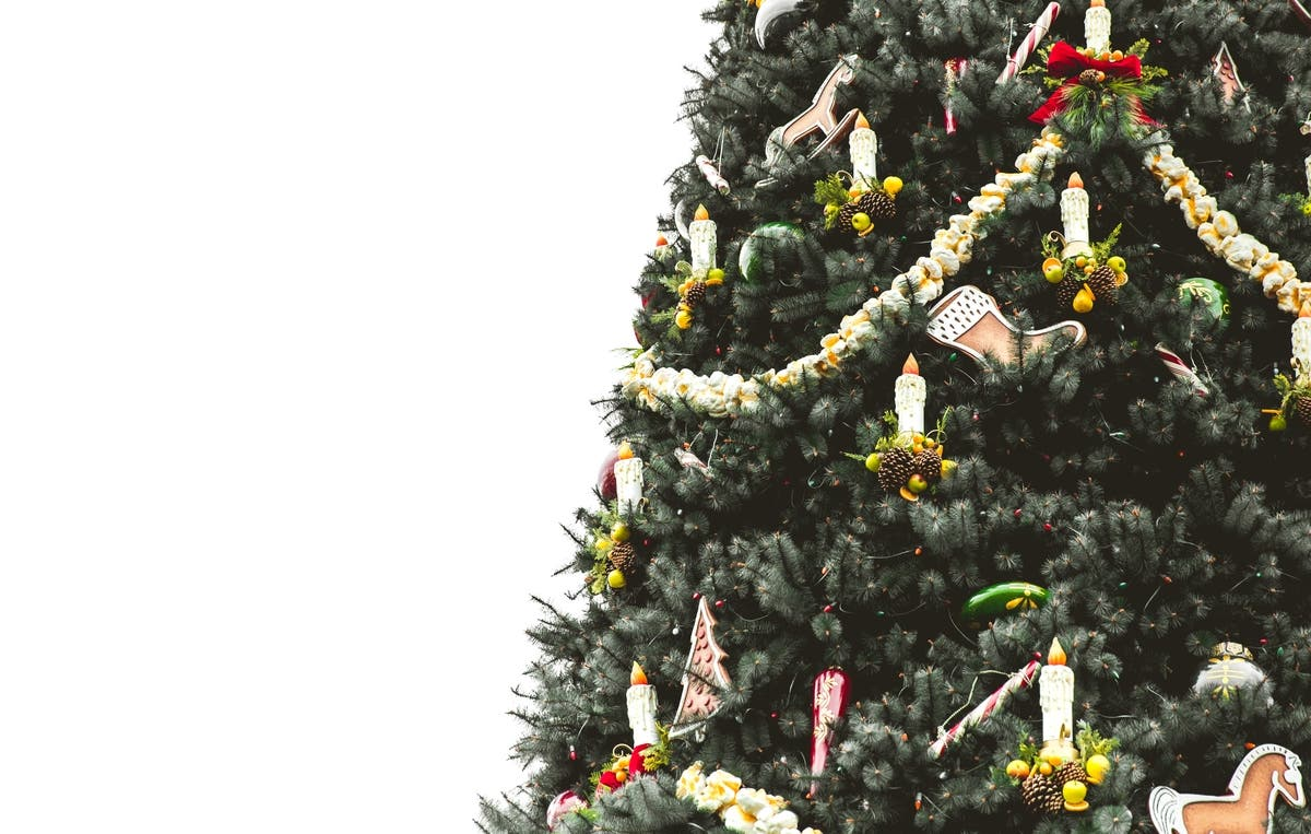 City Of Annapolis Christmas Tree Pickup 2021