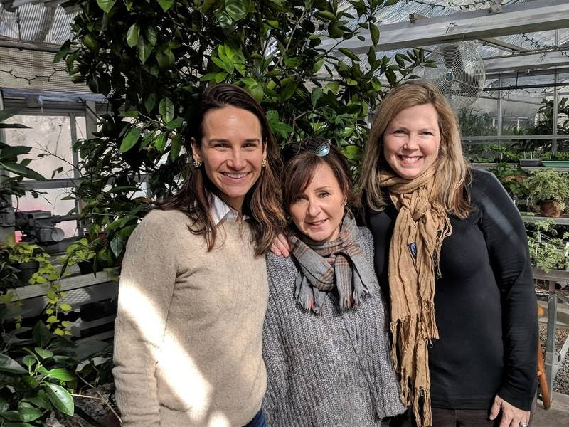 Greenwich Botanical Center Hosts 2nd Annual Spring-Themed Event