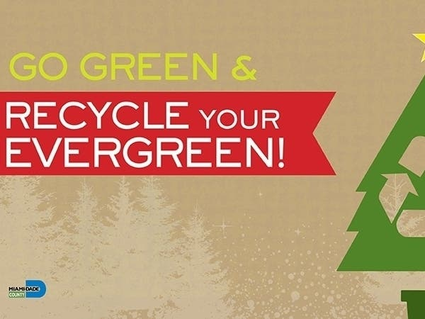 Recycling Schedule 2020 Miami Dade Christmas How To Recycle Your Christmas Tree In Miami Dade County   Miami
