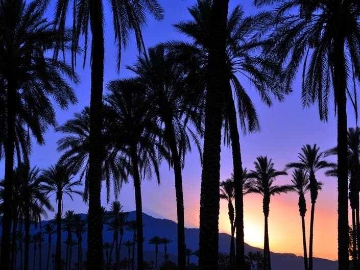 El Paseo Sculpture Exhibition: Palm Desert Looking For Artists