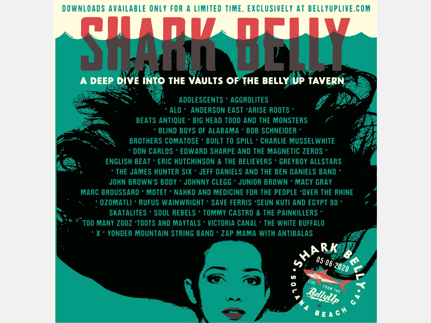North County's Belly Up Tavern Announces 'SharkBelly' Festival