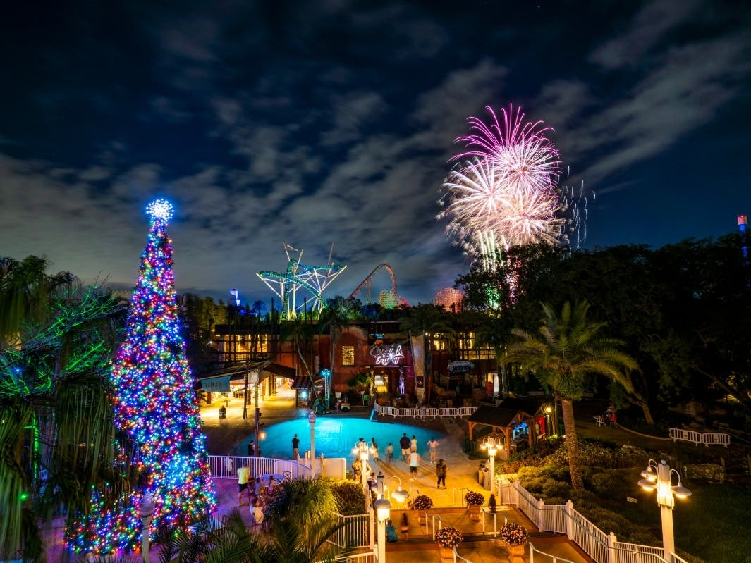 Busch Gardens Offers Socially-Distant New Year's Eve Fireworks | Tampa, FL Patch