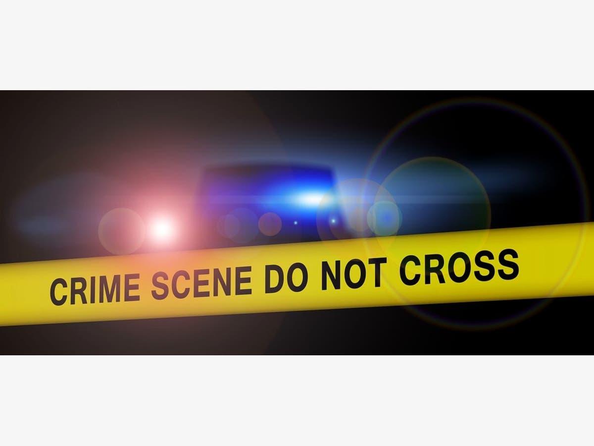 FedEx Guy Dog Bite, Target Employee Theft: Lakewood Crime