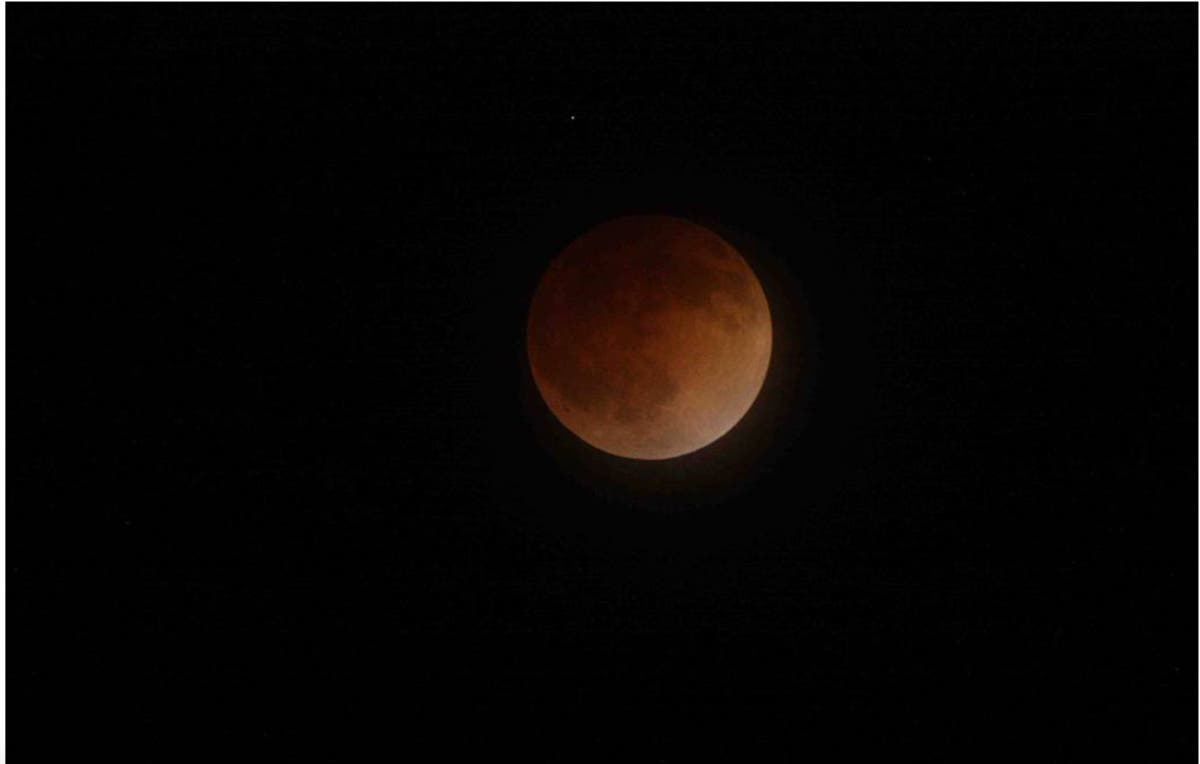 blood wolf moon eclipse denver - photo #8