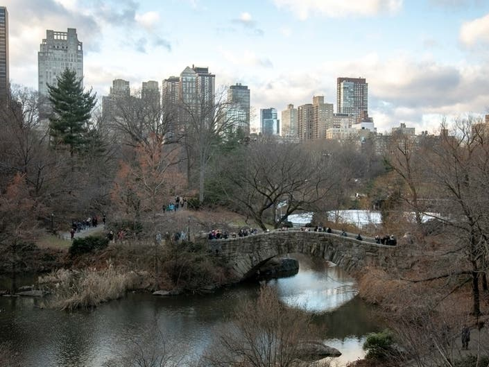 NYC Leaves Residents Tiny Amount Of Green Space, Report Shows