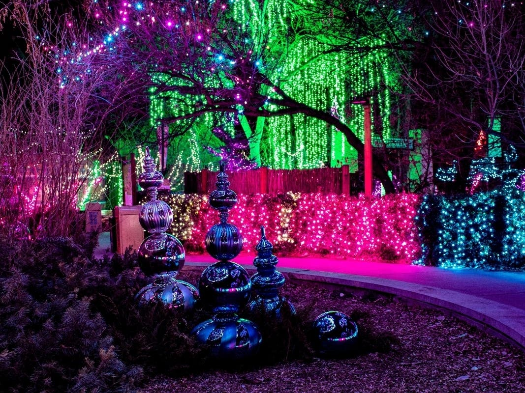 Denver Zoolights Is Back: Activities, Tickets, Entertainment - Patch.com