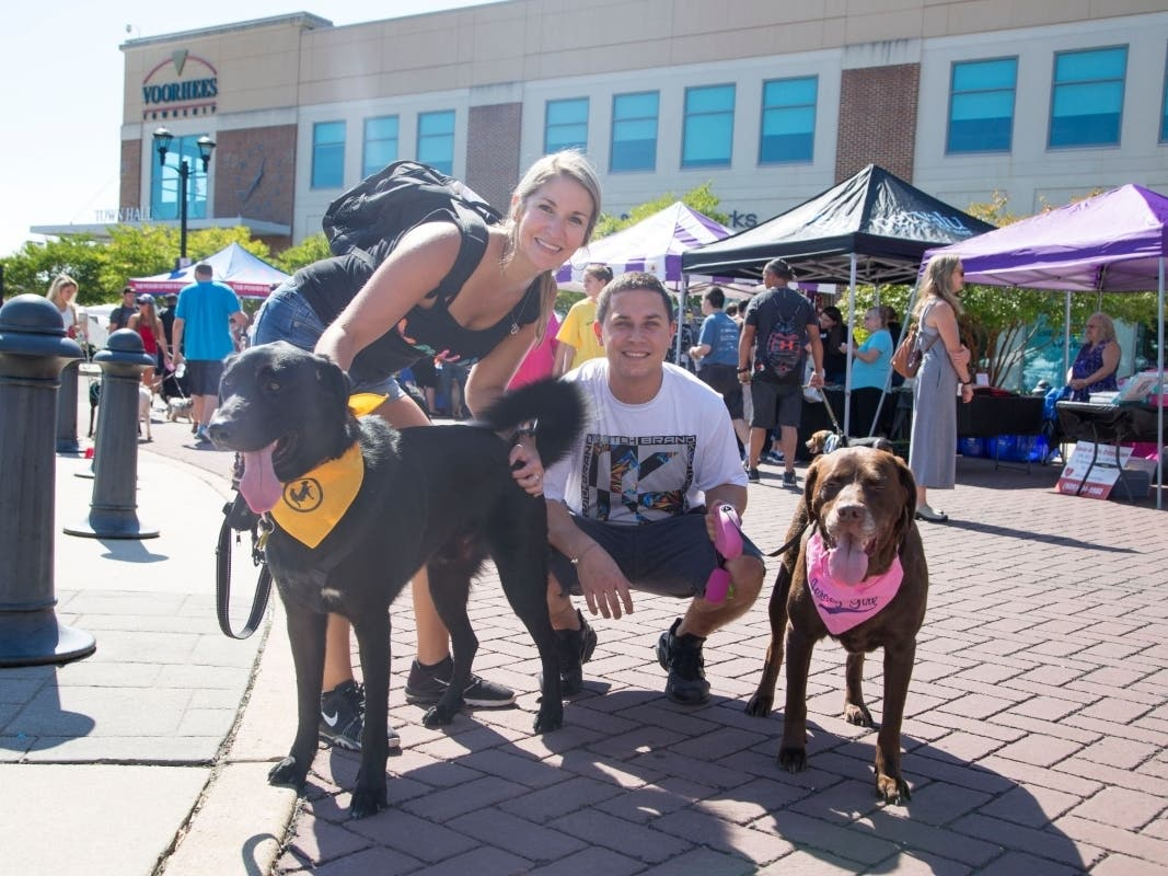 Voorhees Animal Orphanage to Host 23rd Annual Woofstock ...