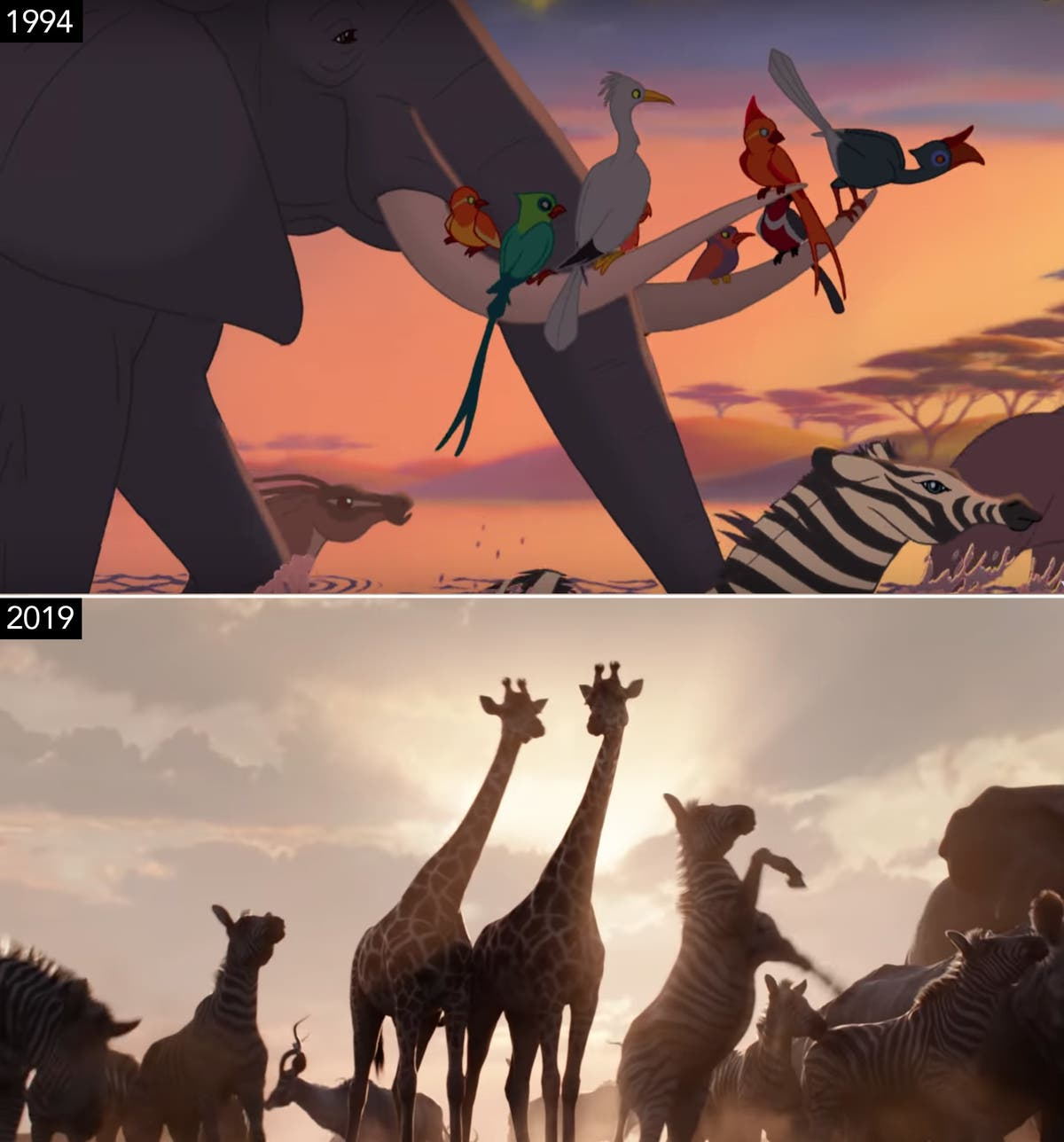 Watch Disneys The Lion King Live Action Movie Trailer Drops