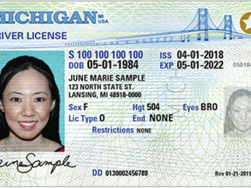 Real Michigan Mi Patch Detroit Id Licenses Compliant Issuing