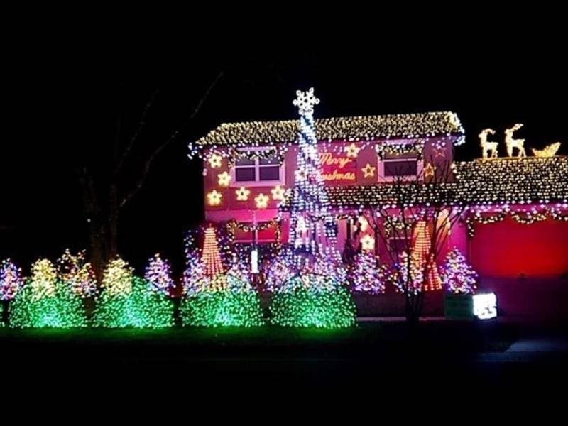 Temple Terrace Family Goes All Out With