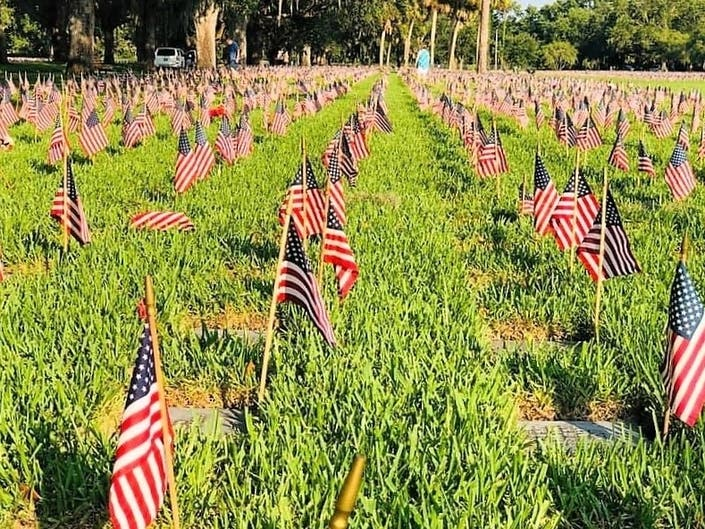Volunteers Plant 35,000 Flags At Bay Pines National Cemetery