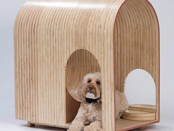 Artists Architects Create Dog Houses For Humane Society