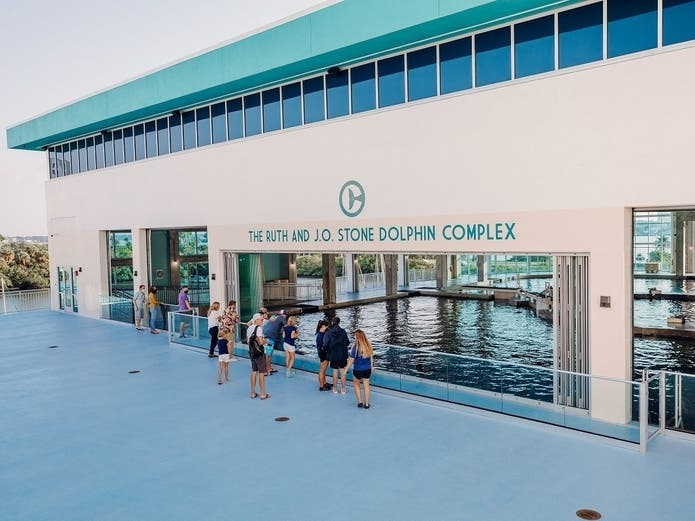 Clearwater Marine Aquarium Unveils New Viewing Areas ...
