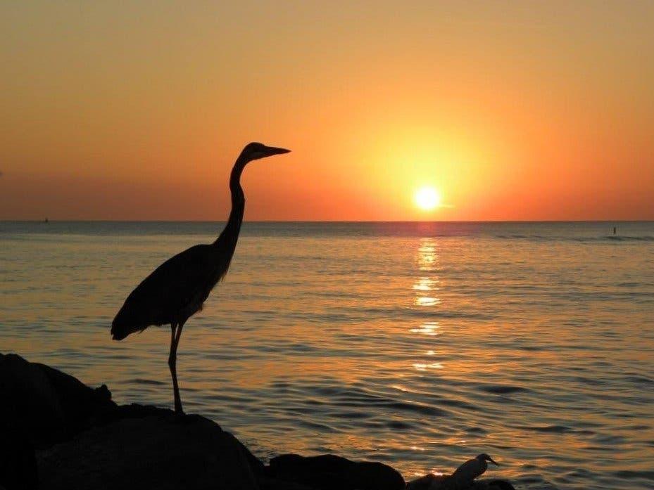 St. Pete Beach Named No. 1 Best Beach In U.S., No. 5 In World