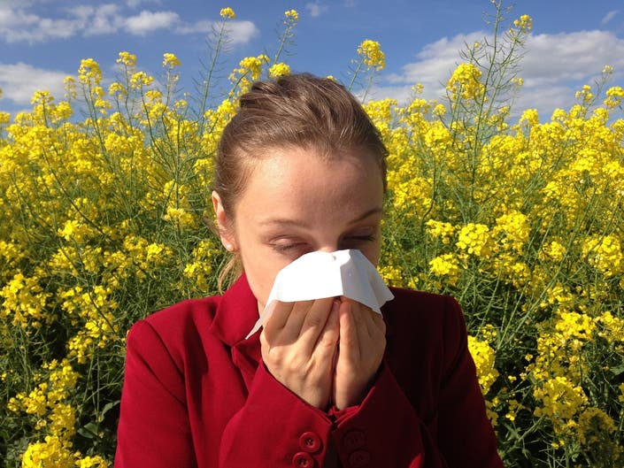 how is denver for allergies
