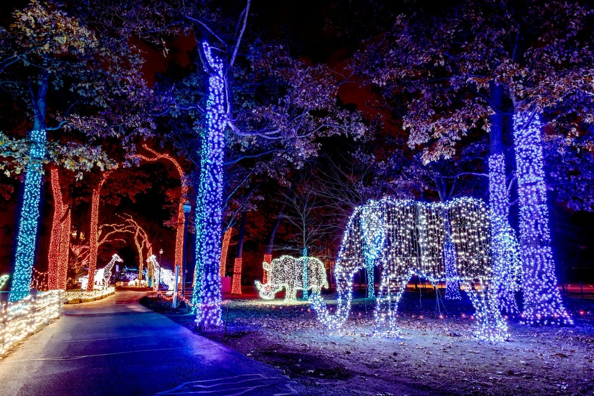 It S Time For Wild Lights At The Detroit Zoo Royal Oak Mi Patch
