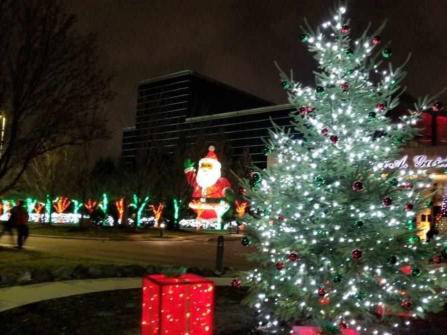 Royal Oak Christmas Light Ceremony 2021 Dearborn S Christmas Tree Lighting Set For Nov 25 Dearborn Mi Patch
