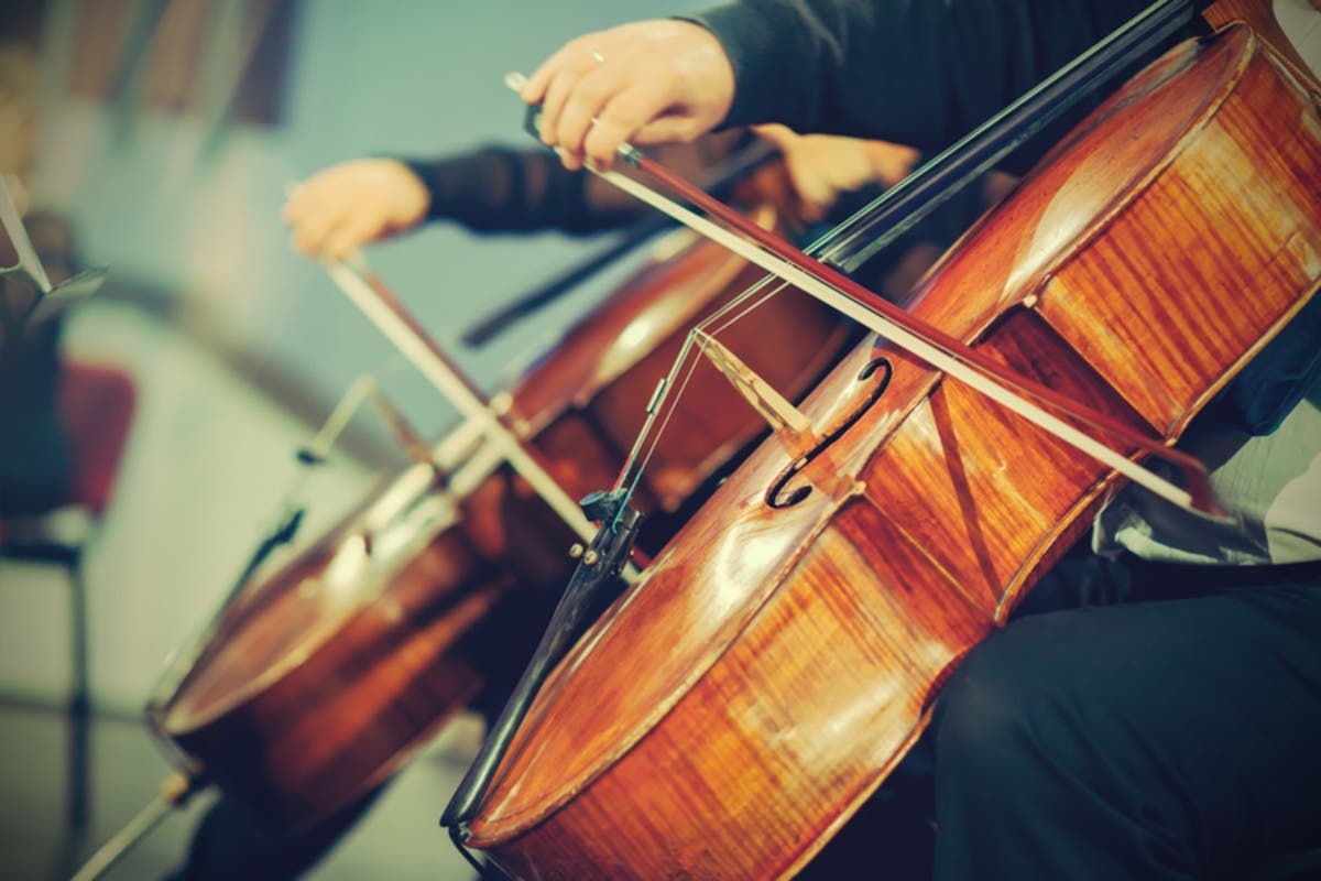 Ridgefield Music Metropolitan String Orchestra In Free