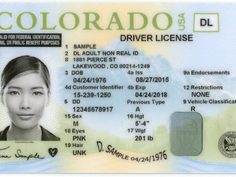 Further Driver's Co Immigrant Across Patch Colorado Cuts Backlogged Faces Program License