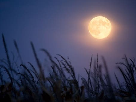 When To See 2021's Full Harvest Moon In Braintree