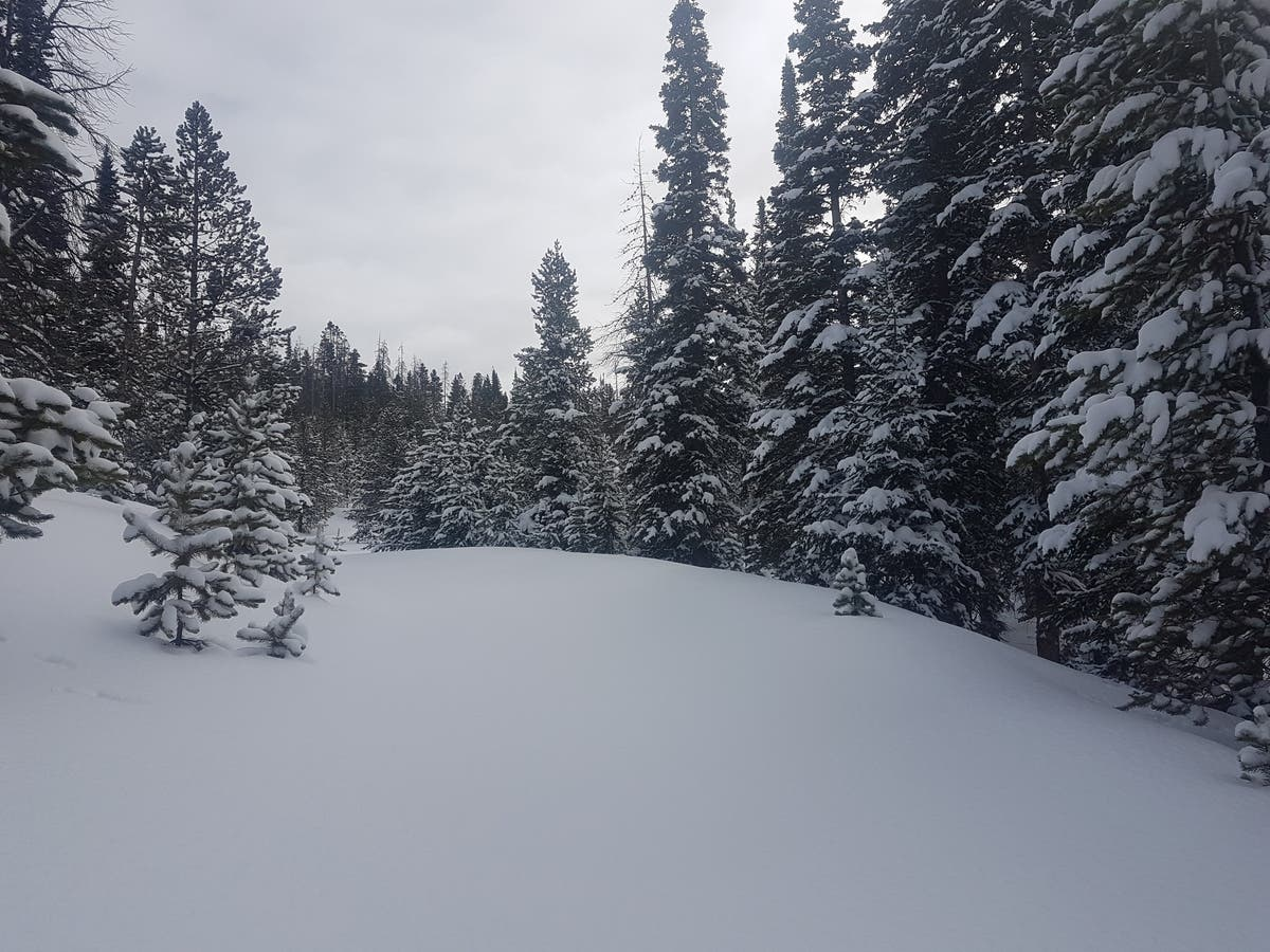 Avalanche Covers I-70