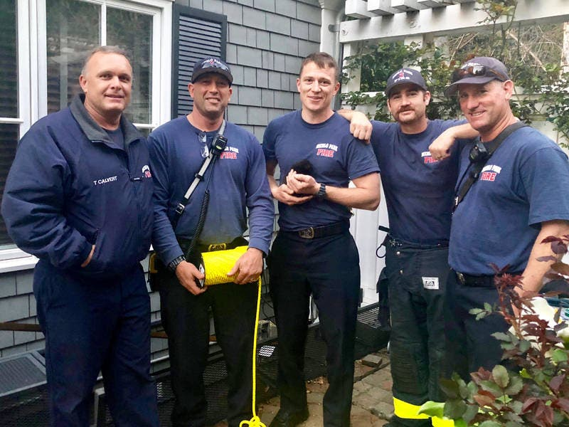 Menlo Park Firefighters Save Kitten Stuck In Pipe