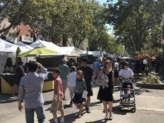 Palo Alto Festival Of Arts Expected To Be Crowded