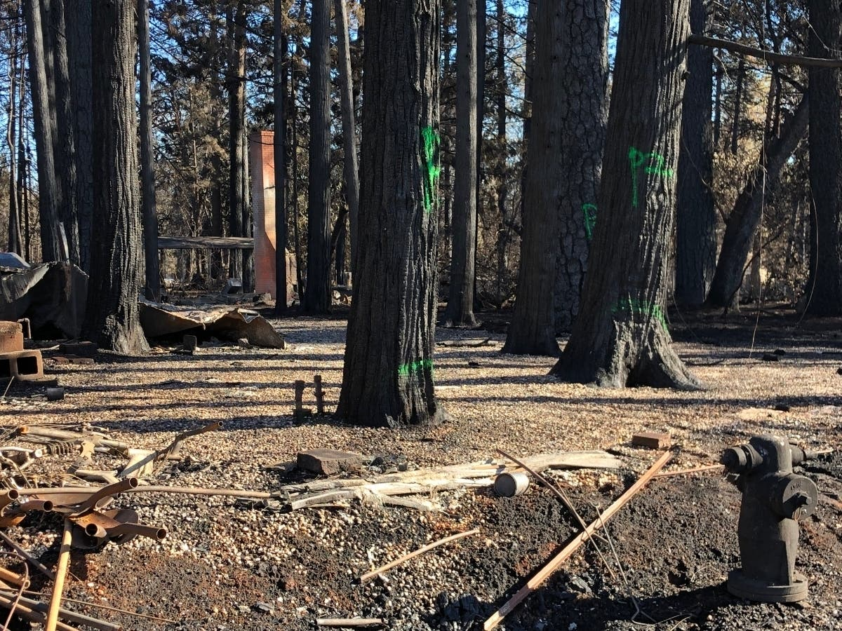 Camp Fire Caused By PG&E Power Lines At 2 Sites, Cal Fire Says