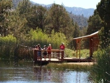 Family YMCA of the Desert Has Record Breaking Camp Oakes Numbers