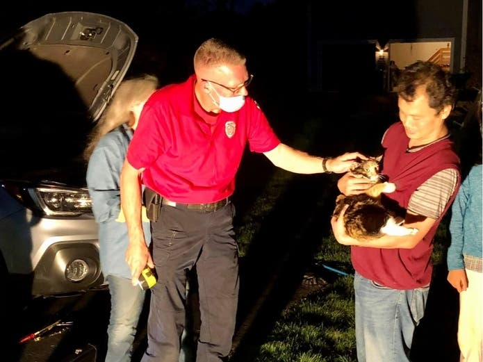 Cat Rescued From Car Engine