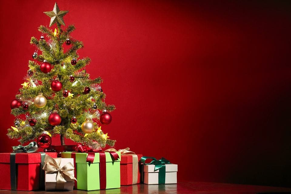How To Recycle Your Christmas Tree In Manhattan Beach