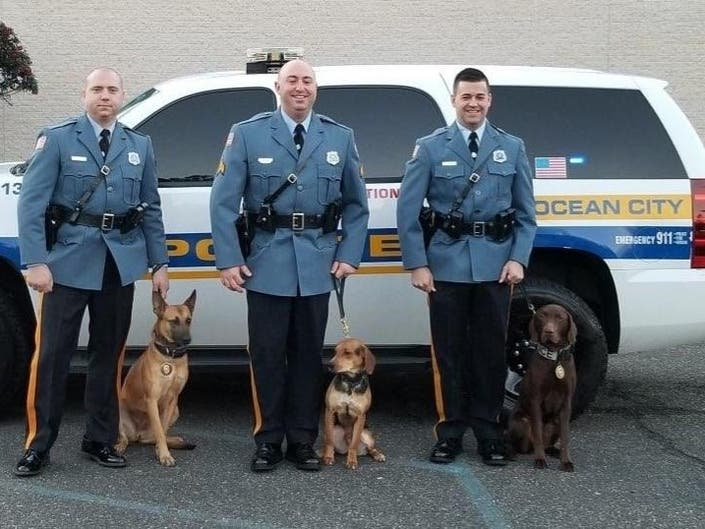 Ocean City Police Introduce New K-9 Unit